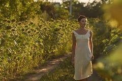 Junge Frau auf einem Gebiet von Sonnenblumen bei Sonnenuntergang stockbild