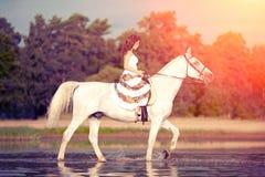 Junge Frau auf einem Pferd Pferderueckenreiter, Frauenreitpferd auf b stockbild