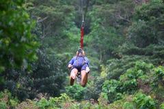 Junge Frau auf zipline über dem Dschungel Stockbild