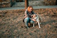 Junge Frau betrachtet ihren Hund im Park stockfotografie