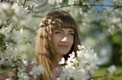 Junge Frau in blühendem Apfelgarten stockfoto
