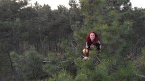Junge Frau der aktiven sportlichen netten Rothaarigen klettern oben auf die Oberseite der Kiefers Luftschuss-Koniferenwald stock video footage