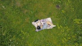 Junge Frau der Brummenansicht, die an Laptop auf grünem Gras arbeitet stockbild