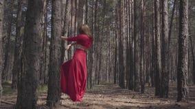 Junge Frau der Fähigkeit im roten Kleidertanzen in der Waldlandschaft Schöner Tänzer, der klassische Balletthaltungen zeigt Konze stock video footage