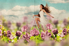 Junge Frau der Schönheit im Kleid auf der Wiese Stockfotos