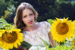 Junge Frau der Schönheit im Sonnenblumenfeld Stockfotografie
