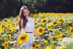 Junge Frau der Schönheit im Sonnenblumenfeld Stockbild