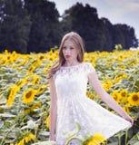 Junge Frau der Schönheit im Sonnenblumenfeld Stockfotos