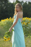 Junge Frau der Schönheit im Sonnenblumenfeld Lizenzfreies Stockbild