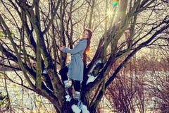Junge Frau an der spielerischen Stimmung, die auf Baum steht Stockbild