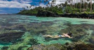 Junge Frau, die über Korallenriff auf einer Tropeninsel schnorchelt stock footage