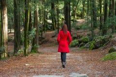 Junge Frau, die allein auf einen Wald geht lizenzfreie stockfotos