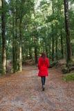 Junge Frau, die allein auf einen Wald geht lizenzfreie stockbilder