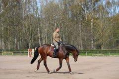 Junge Frau, die auf das Pferd trottet Lizenzfreie Stockfotografie