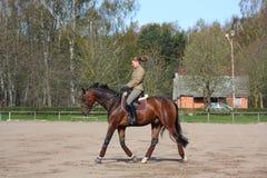 Junge Frau, die auf das Pferd trottet Lizenzfreies Stockbild