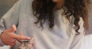 Junge Frau, die auf dem Bett streicht ihre Katze der getigerten Katze im Schlafzimmer 4K 4k sitzt stock footage