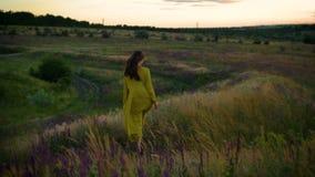 Junge Frau, die auf gedrehtes Blumenfeld in der Sonnenuntergangzeit geht stock footage