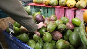 Junge Frau, die Avocados im Gemischtwarenladen wählt Null überschüssiges Mädchen des strengen Vegetariers kaufende Früchte und Ve stock video