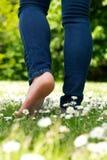 Junge Frau, die barfuß auf grünes Gras im Park geht Stockfoto
