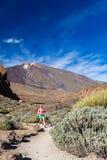 Junge Frau, die in Berge am sonnigen Sommertag läuft Stockbilder
