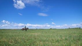 Junge Frau, die ein Pferd auf das grüne Feld reitet stock video