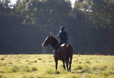 Junge Frau, die ein Pferd im Gewann reitet Lizenzfreies Stockfoto