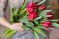 Junge Frau, die ein schönes Bündel rote Tulpen in ihren Händen hält Frühling vorhanden für ein Mädchen in einem grauen Kleid stockbilder