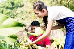 Junge Frau, die eine grüne Gießkanne im Garten verwendet Lizenzfreies Stockbild