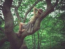 Junge Frau, die in einem Baum liegt Stockfotos