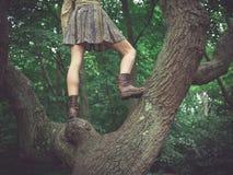 Junge Frau, die in einem Baum steht Stockbild