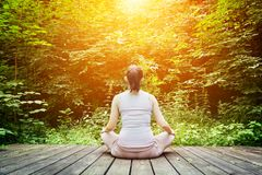 Junge Frau, die in einem Waldzen, Meditation, gesunde Atmung meditiert Stockfotos