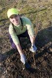 Junge Frau, die einen Baum pflanzt lizenzfreie stockbilder