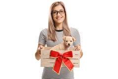 Junge Frau, die einen kleinen Welpen in einer Holzkiste mit einem roten BO hält lizenzfreies stockfoto