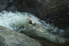 Junge Frau, die gegen den Strom, gegen Strom, Sugar River, neu schwimmt Lizenzfreie Stockfotos