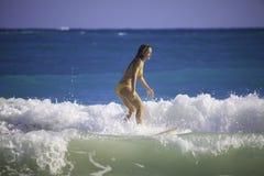 Junge Frau, die in Hawaii surft stockfotos