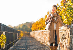 Junge Frau, die in Herbstpark geht Stockfotos