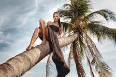 Junge Frau, die hinunter Kokosnusspalme laing ist Lizenzfreie Stockfotografie
