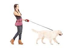 Junge Frau, die ihr Hund geht und an einem Handy spricht Lizenzfreie Stockfotografie