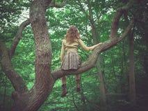 Junge Frau, die im Baum im Wald sitzt Stockbild
