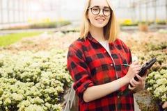 Junge Frau, die im Gew?chshaus arbeitet Attraktive M?dchenkontroll- und -z?hlungsblumen, unter Verwendung des Tablet-Computers stockfotos