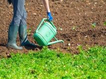 Junge Frau, die manuell den Boden des Landgartens wässert stockbild