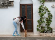 Junge Frau, die mit einer Katze spielt stockfoto