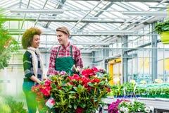 Junge Frau, die mit seinem Freund an seinem Arbeitsplatz im Blumenladen spricht Stockbild