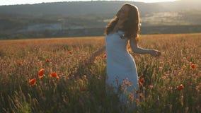 Junge Frau, die Natur genießt junge Schönheit, die unter blühenden Mohnblumenblumen geht stock video