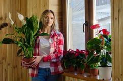 Junge Frau, die um Hauptanlagen sich kümmert Stockfoto