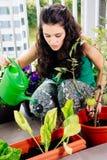 Junge Frau, die um ihrem kleinen Garten auf dem Balkon sich kümmert stockfotografie