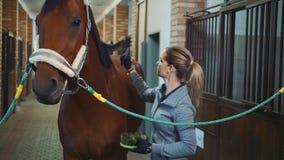 Wird von pferd genommen frau Die Letzten