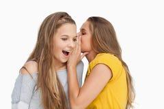 Junge Frau, die zu ihrem Freund flüstert Stockbilder