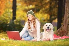 Junge Frau in einem Park mit ihrem Hund, der an einem Laptop arbeitet Stockfotografie