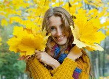 Junge Frau geht in das Herbstholz Stockfotos